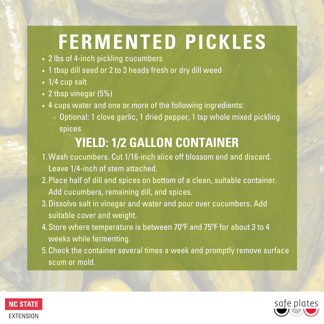 Fermented Pickles recipe